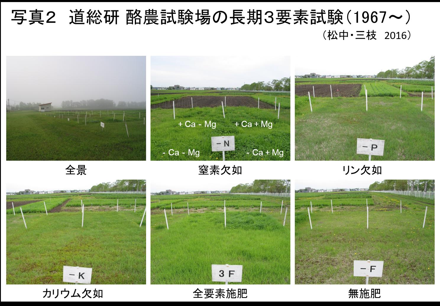 草地の土づくりー維持管理の基礎理論ー