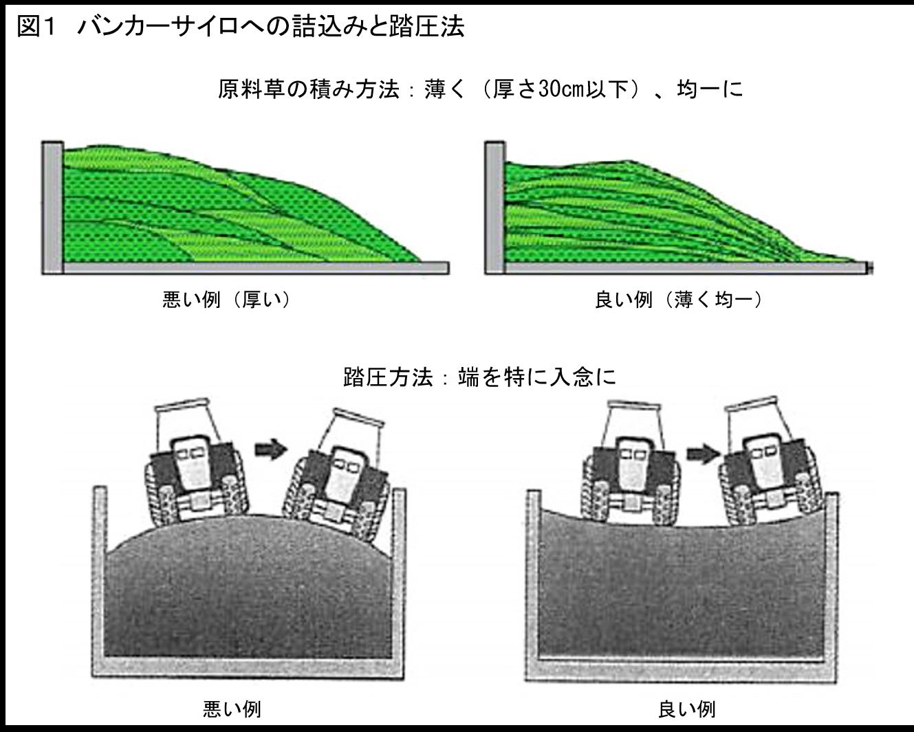 飼料作物の生産と調製―理論と実際― ≪第4回≫牧草の調製利用~サイレージ調製の基本と実際~