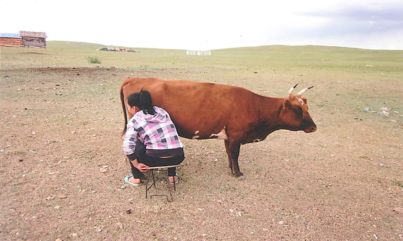 """世界の乳文化図鑑① 乳糖不耐症であるが故に""""乳""""を食べる人々"""