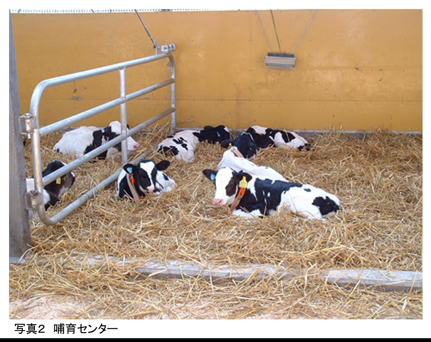 農場のバイオセキュリティを考える ≪第1回≫農場の防疫対策