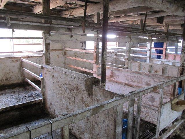 農場のバイオセキュリティを考える ≪第6回≫牛舎の衛生対策(石灰塗布)