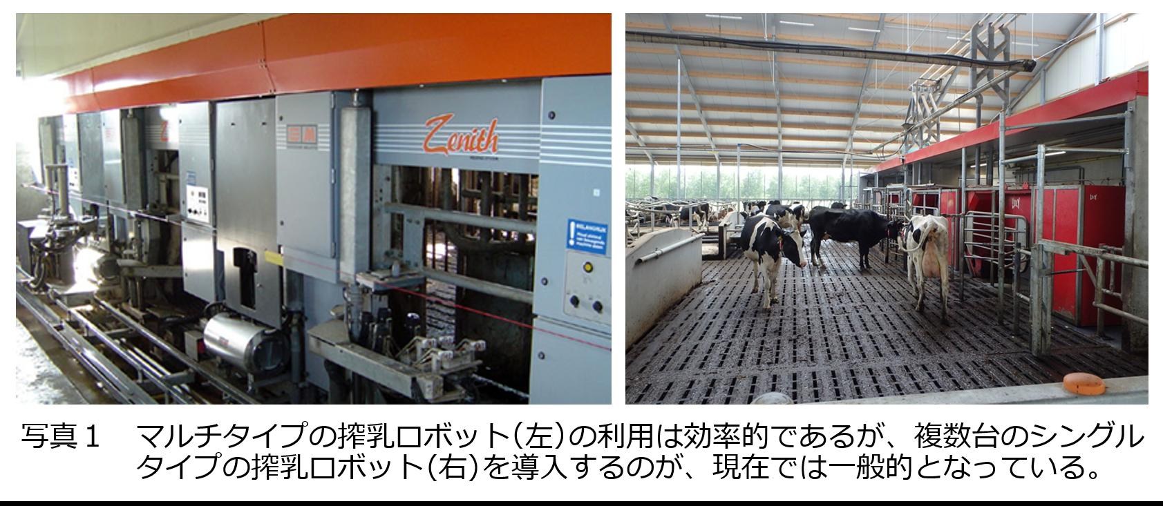 日本における搾乳ロボットの普及と地域による利用特性