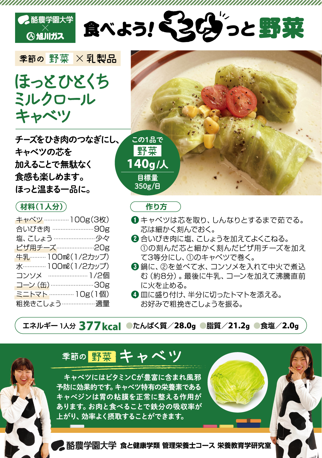 食べよう!モウっと野菜「ほっとひとくちミルクロールキャベツ」(ガスだより「ほっと」3月号より)