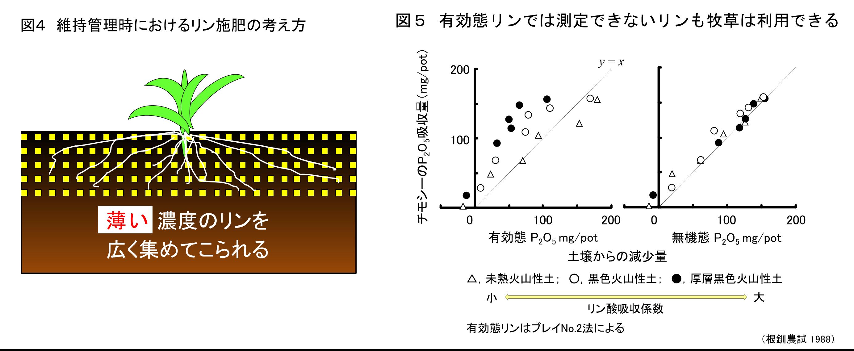 草地の土づくり  ≪第7回≫土壌診断に基づく施肥対応3:リンの施肥対応