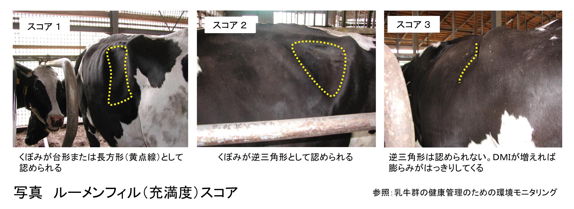 乳牛の周産期疾病予防と飼養環境モニタリング