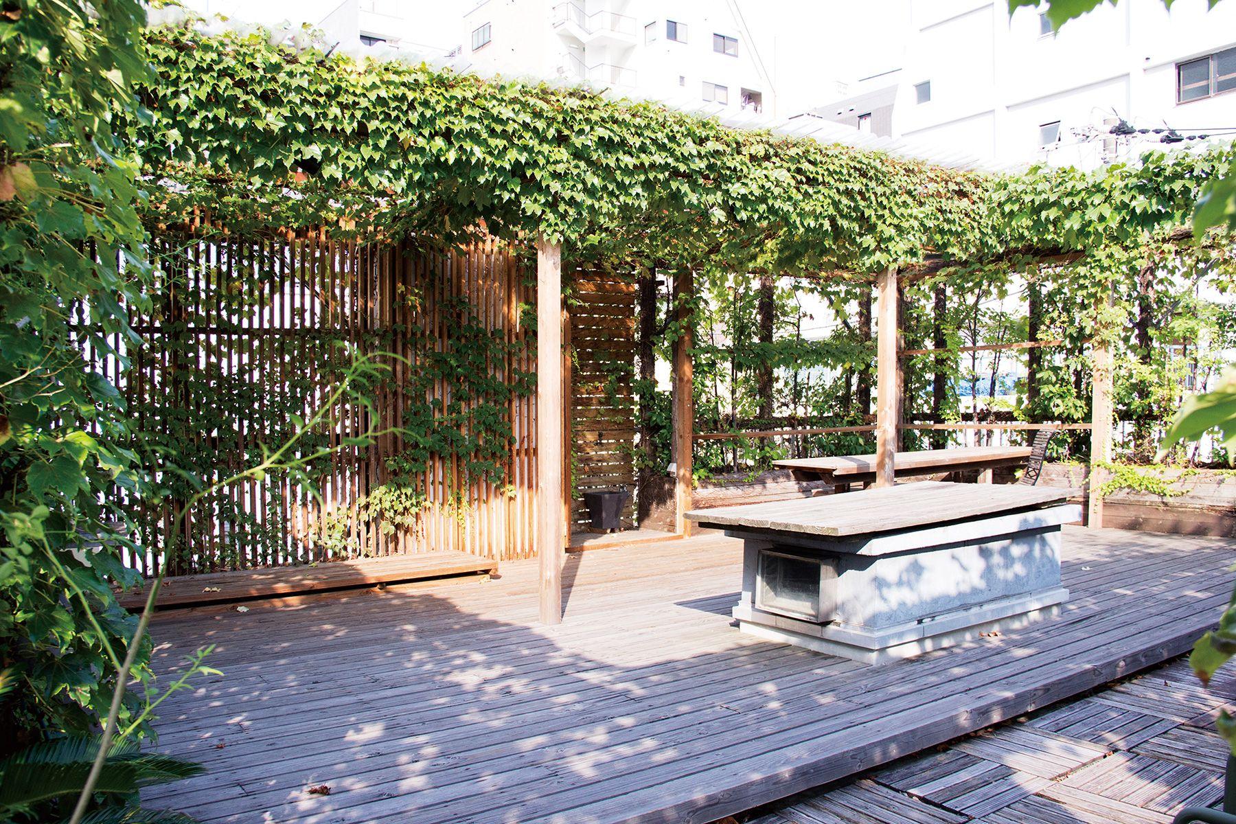 LIGHT BOX STUDIO 青山 2F (ライトボックススタジオ)ROOF南西から撮影
