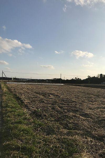 FARM CAMPUS (ファームキャンパス) 古民家+畑+水田2018.3月現在