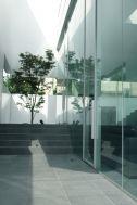M HOUSE/個人宅 (エム ハウス):庭