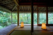 蓼科山荘(別荘):濡縁から雑木林