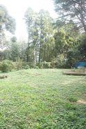 大日苑(ダイニチエン)/旧植竹庄兵衛邸:洋館隣の庭