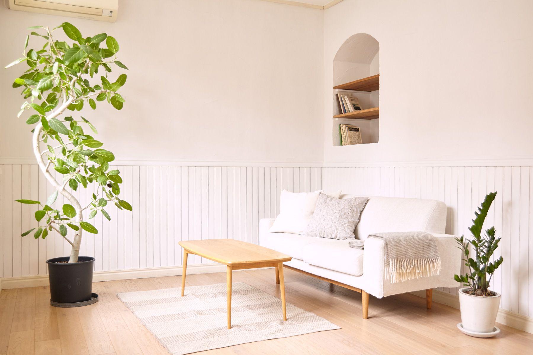 maison de blanc(メゾン ド ブラン)