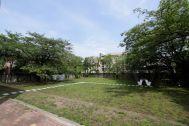 文苑邸(ぶんえんてい):芝生の庭