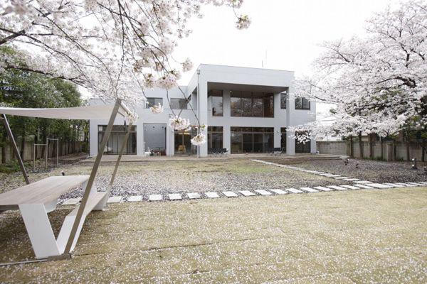 文苑邸(ぶんえんてい)春の桜