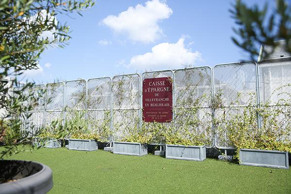 Atelier Pom 目黒中町 (アトリエ ポム)屋上/温室の小屋と芝