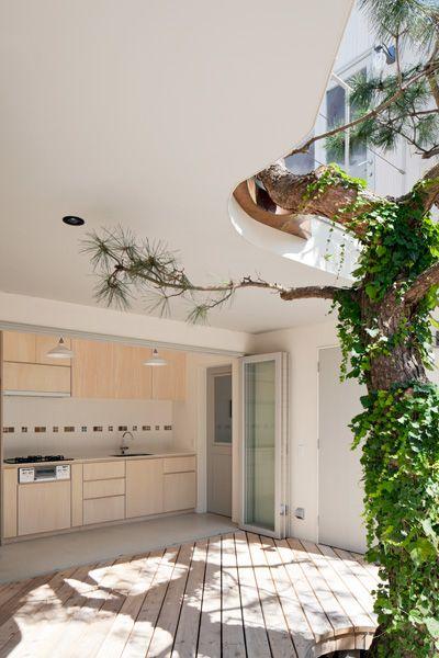 Seaside Hayama / 個人宅開放的なキッチン