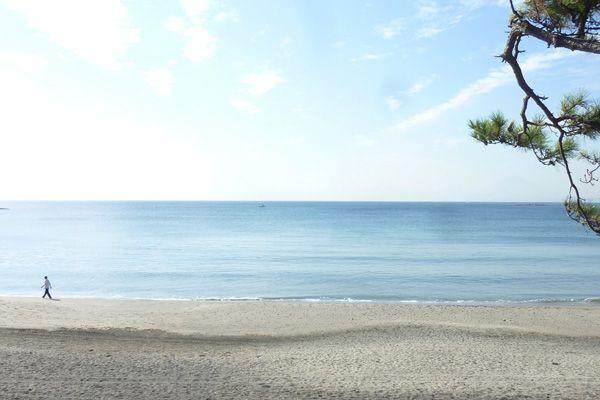 Seaside Hayama / 個人宅一色海岸まで徒歩2分