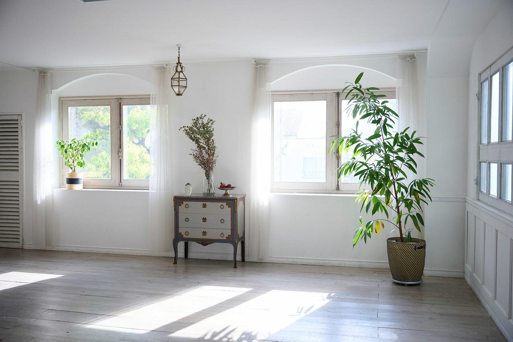 STUDIO FOGLIA 2st (スタジオ フォグリア 2st)広々家具の撮影にも