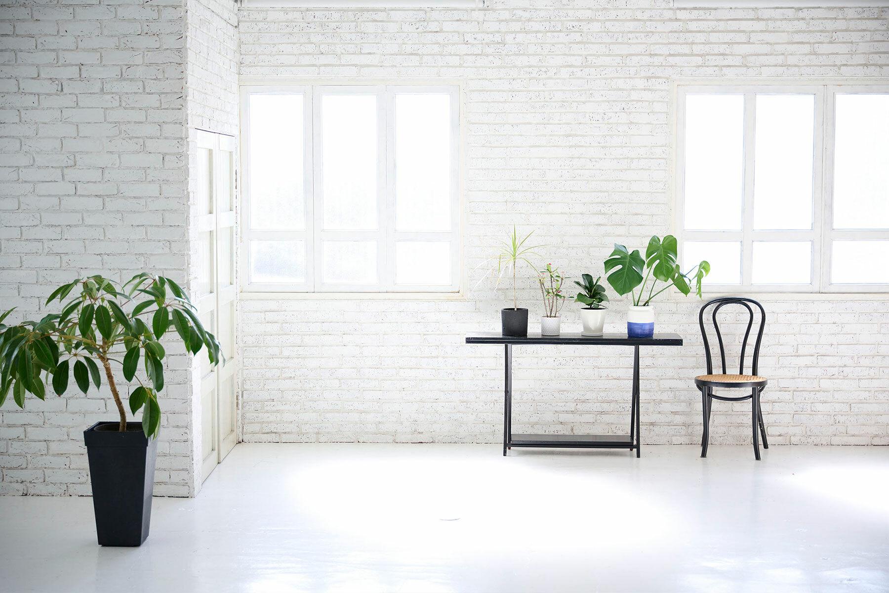 STUDIO FOGLIA 2st (スタジオ フォグリア 2st)白壁に古材床も敷けます