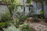 mimosa house resort (ミモザハウス リゾート):