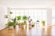 StudioBRICK 3F (スタジオブリック八丁堀3F):透け感のある白いカーテン