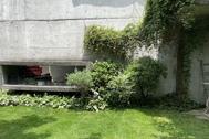 Atelier S 尾山台 (アトリエ エス):南側_コンクリート壁に蔦う草花