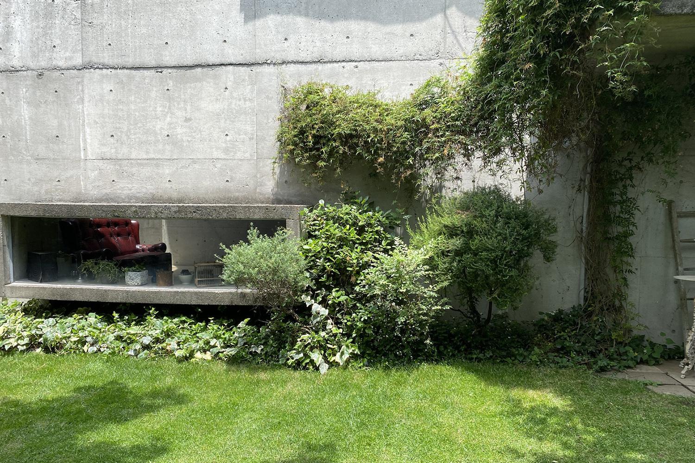 Atelier S 尾山台 (アトリエ エス)南側_コンクリート壁に蔦う草花