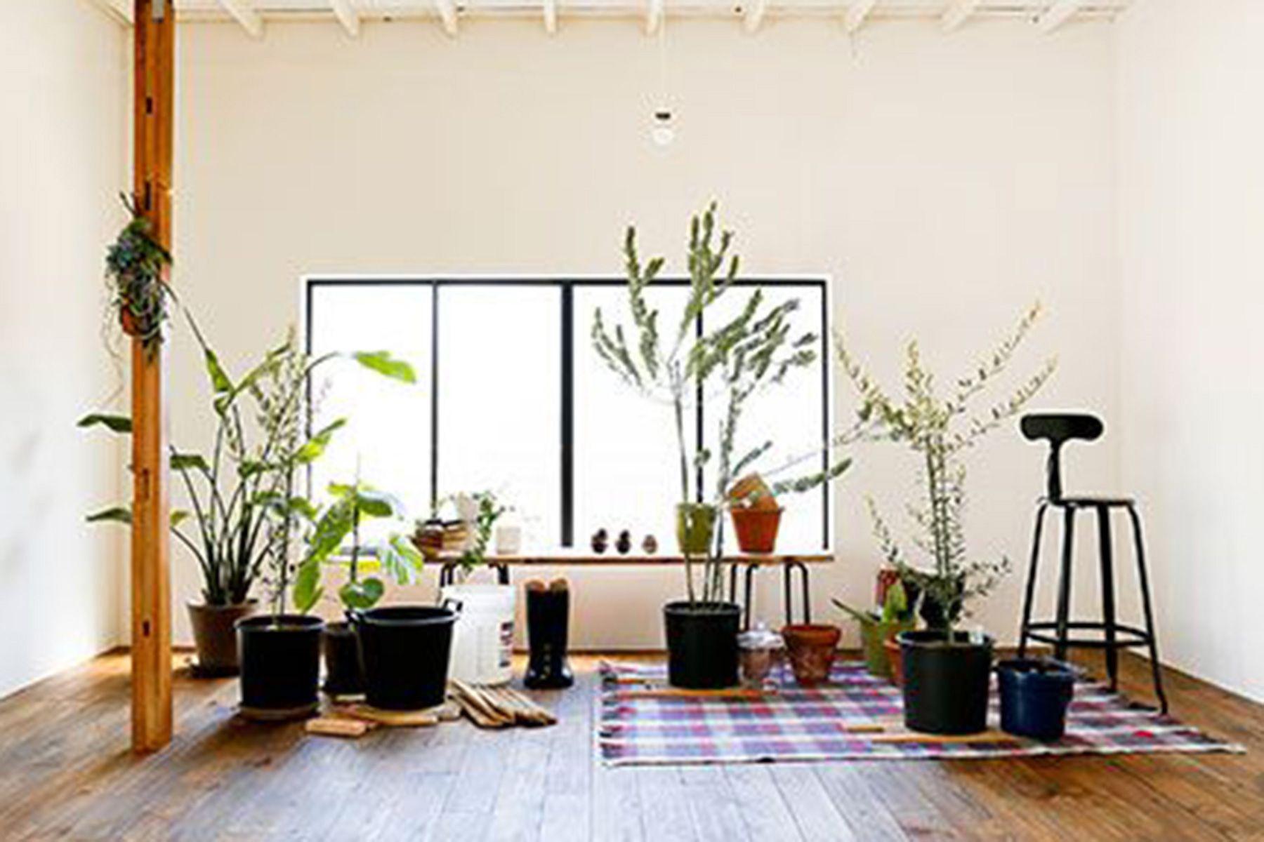 studio PEANUTS (スタジオ ピーナッツ)1F/可動式の壁・白