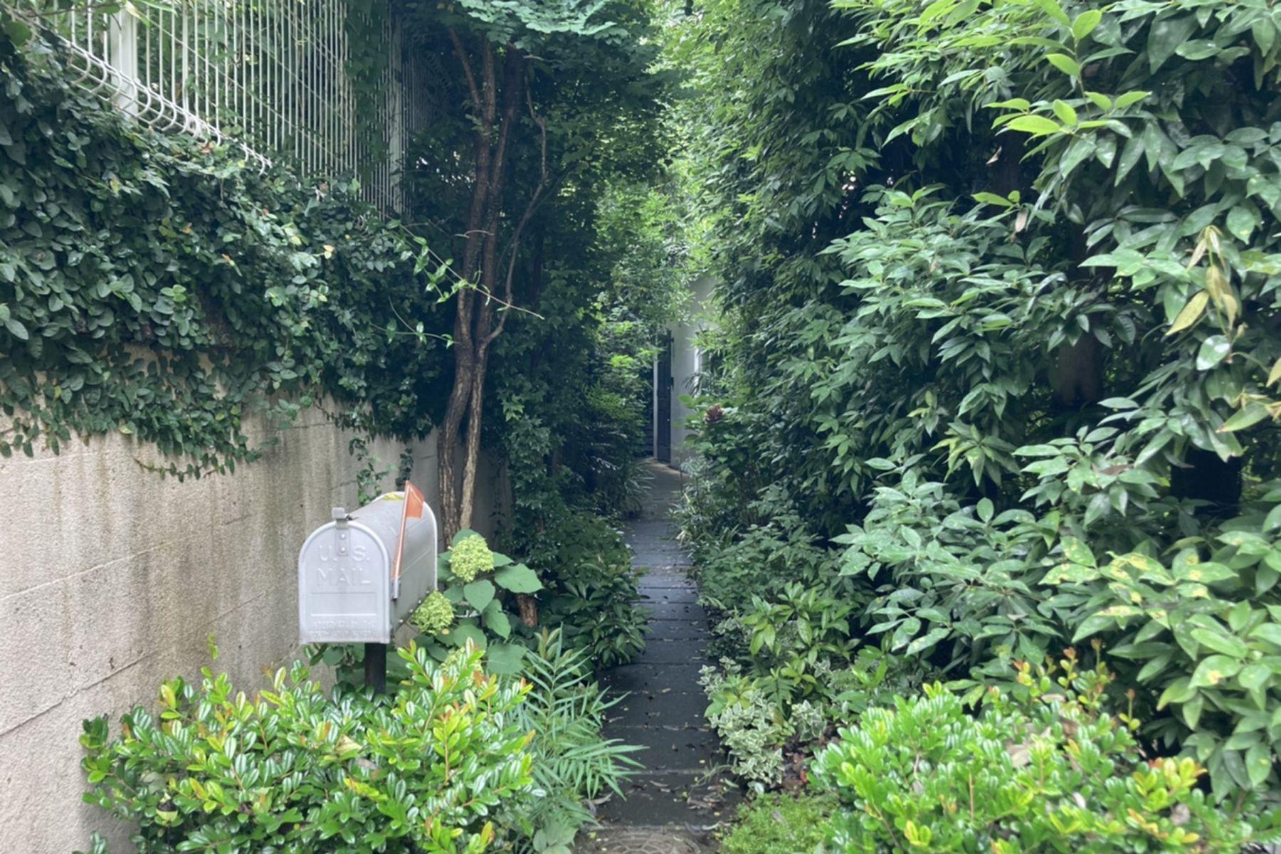 KOTORI HOUSE/個人宅 (コトリ ハウス)玄関までのアプローチ