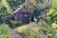 KOTORI HOUSE/個人宅 (コトリ ハウス):庭の状態 2021.07.09
