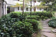 泰山館 駒沢(集合住宅) (たいさんかん):2018.1.12 庭の状態