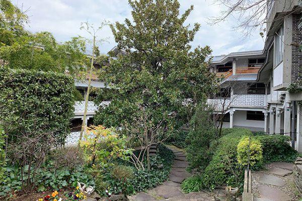 泰山館 駒沢(集合住宅) (たいさんかん)2018.1.12 庭の状態