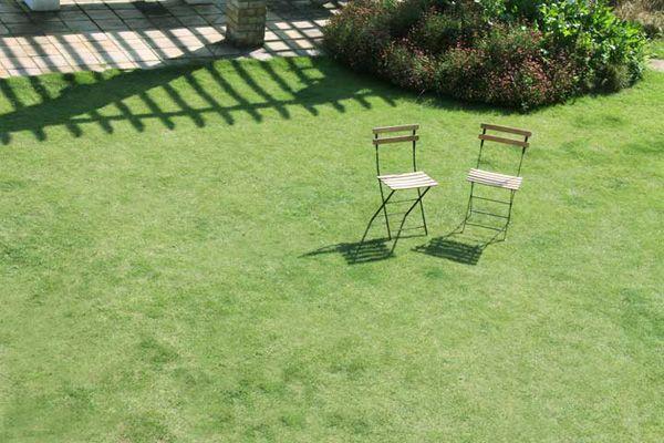 LAGUNA(ラグナ)公園のような芝生の庭
