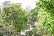 SHOTOHOUSE302 (ショウトウハウス302):鍋島松濤公園の眺望
