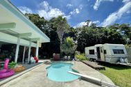 Palms 22 