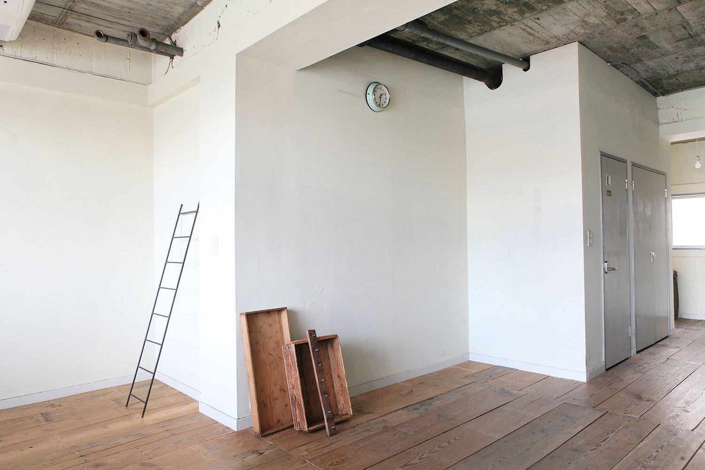 salvia cobaco(サルビア コバコ)白壁のコーナー