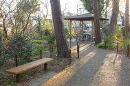 Albert House 吉祥寺  (アルバートハウス吉祥寺):近隣の公園