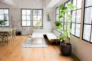 atelier rauque Cstudio (アトリエロークCスタジオ):白壁からリビング