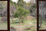 古民家スタジオ 火林荘(かりんそう):庭