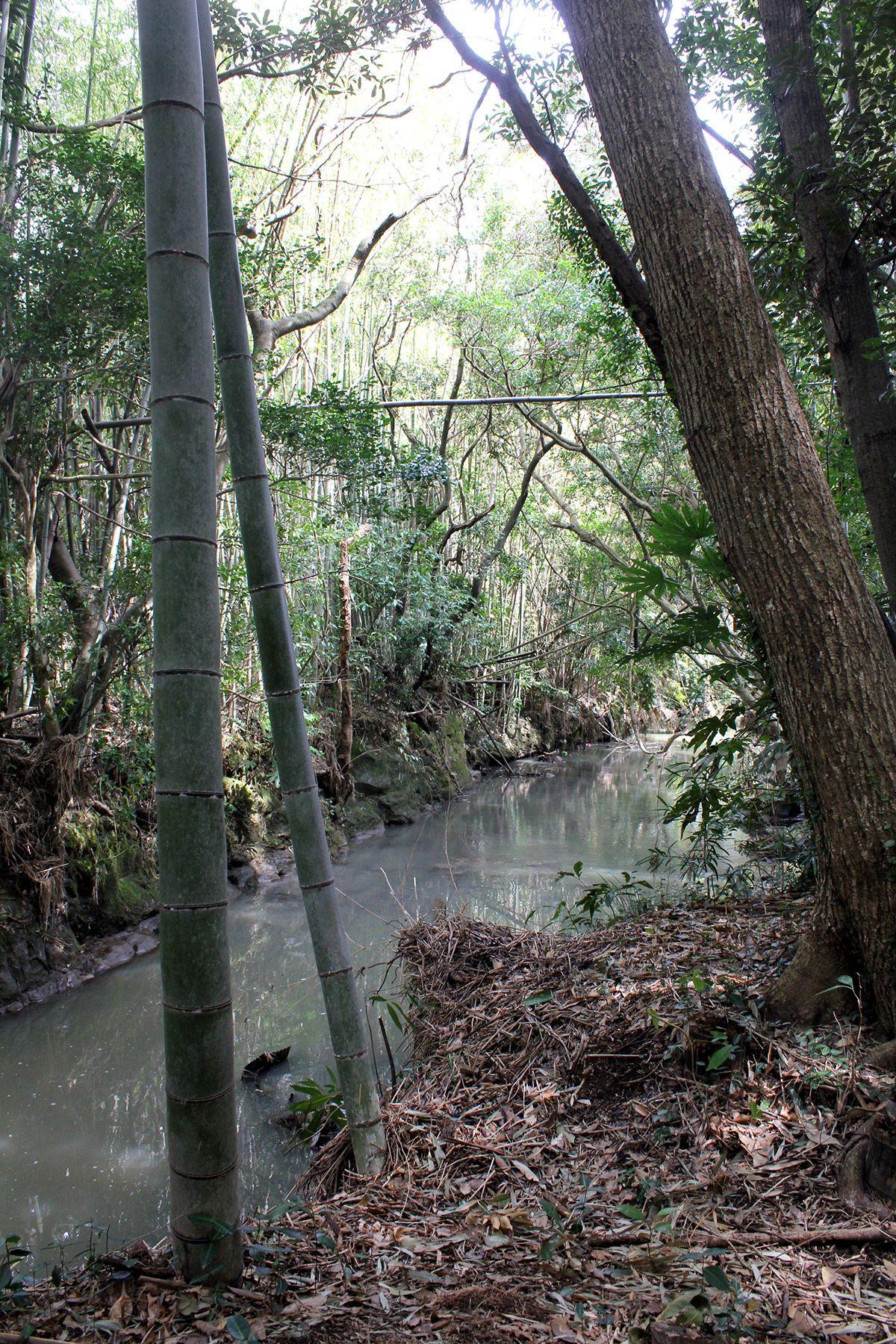 古民家スタジオ 火林荘(かりんそう)敷地内の川