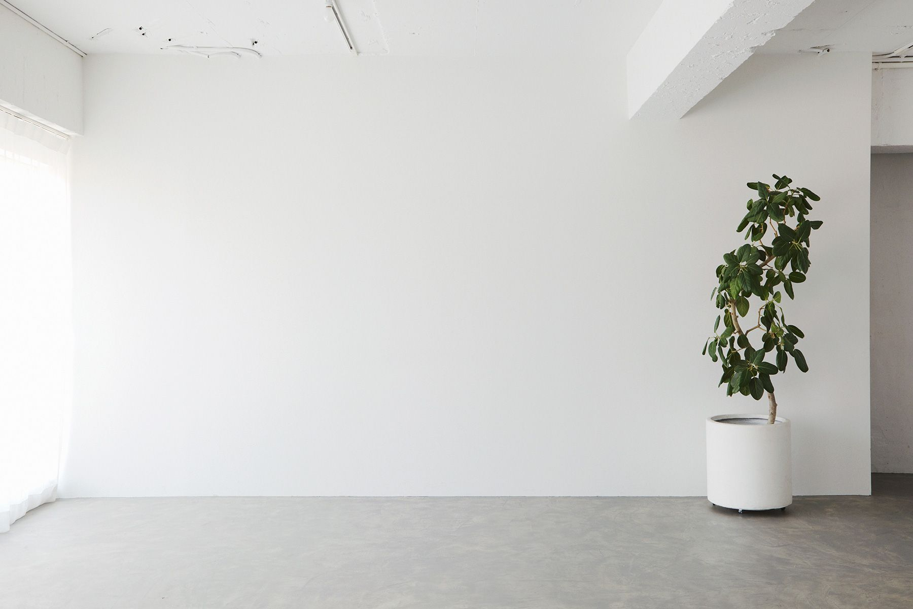 inTHE studio/nakameguro (インザスタジオ/ナカメグロ)MAIN ROOM