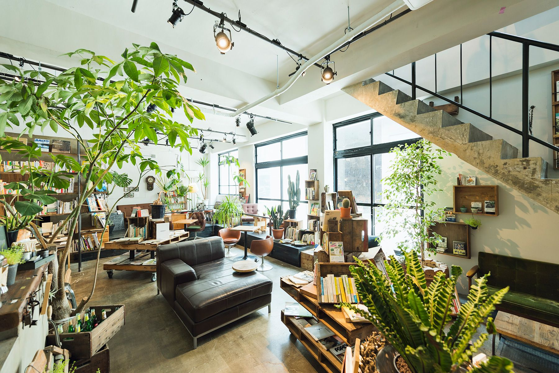 ROUTE COMMON BOOK CAFE  (ルートコモン ブックカフェ)入口側から店内