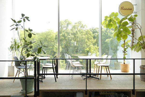 Studio Roaster (スタジオ ロースター)cafe space