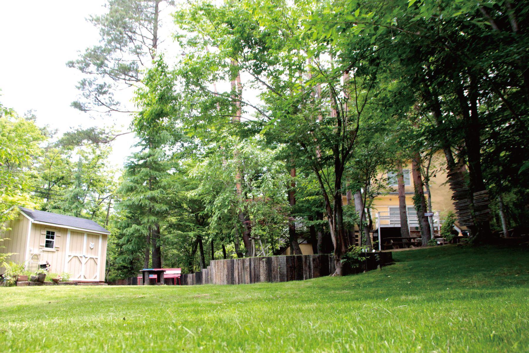 UNION HOUSE(ユニオンハウス)一面、芝生