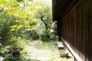 古民家 HUG(ハグ):庭の状態 2021.4.9 昼頃