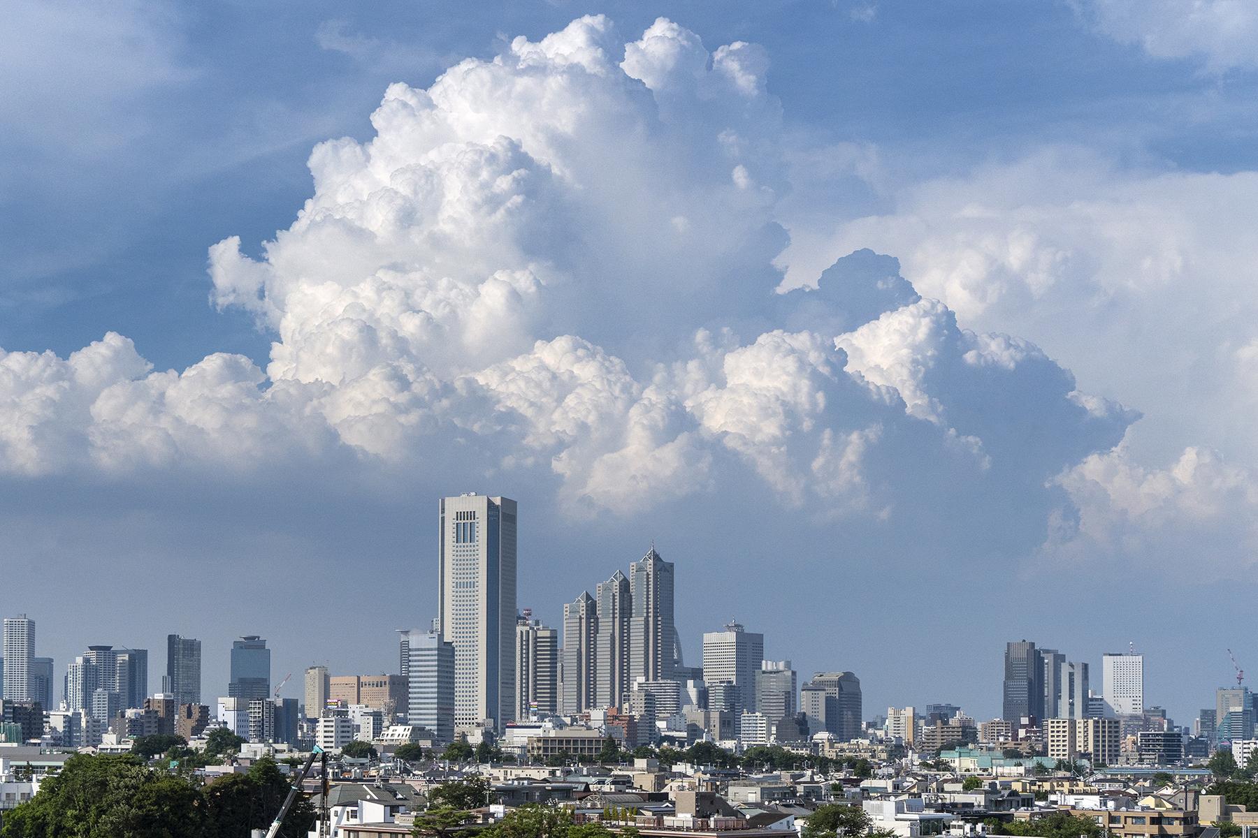Studio TERRANOVA Cst 屋上バルコニー (スタジオテラノヴァ)ペントハウス内 ラウンドソファ