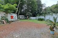 Joining studio (ジョイニング スタジオ):太めの木が多く生えてます。