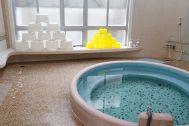 HOMEIKAN 森川別館/旅館 (ホウメイカン):タイル張りのお風呂(ローマ風呂)