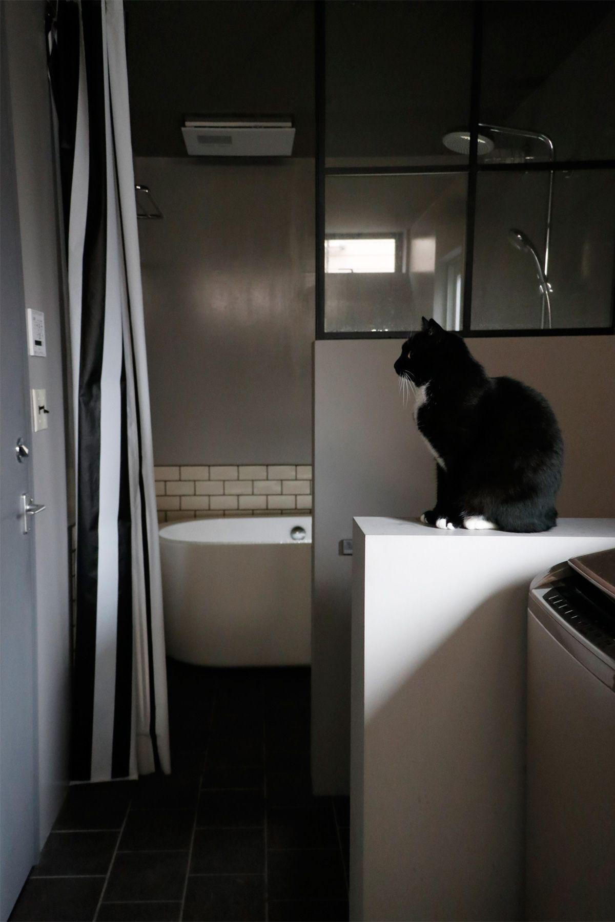 鎌高サーフハウス/個人宅1F 洗面からバスルーム