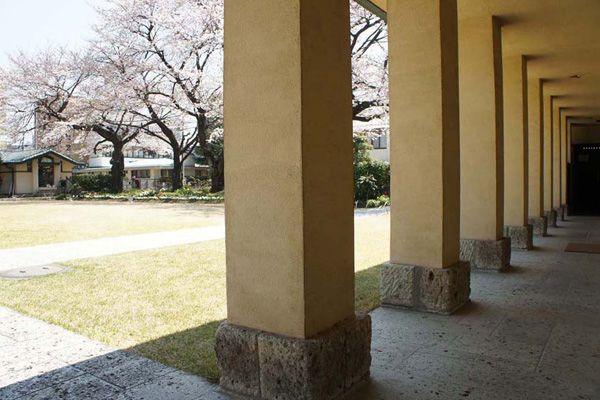 自由学園明日館(重要文化財)外廊下