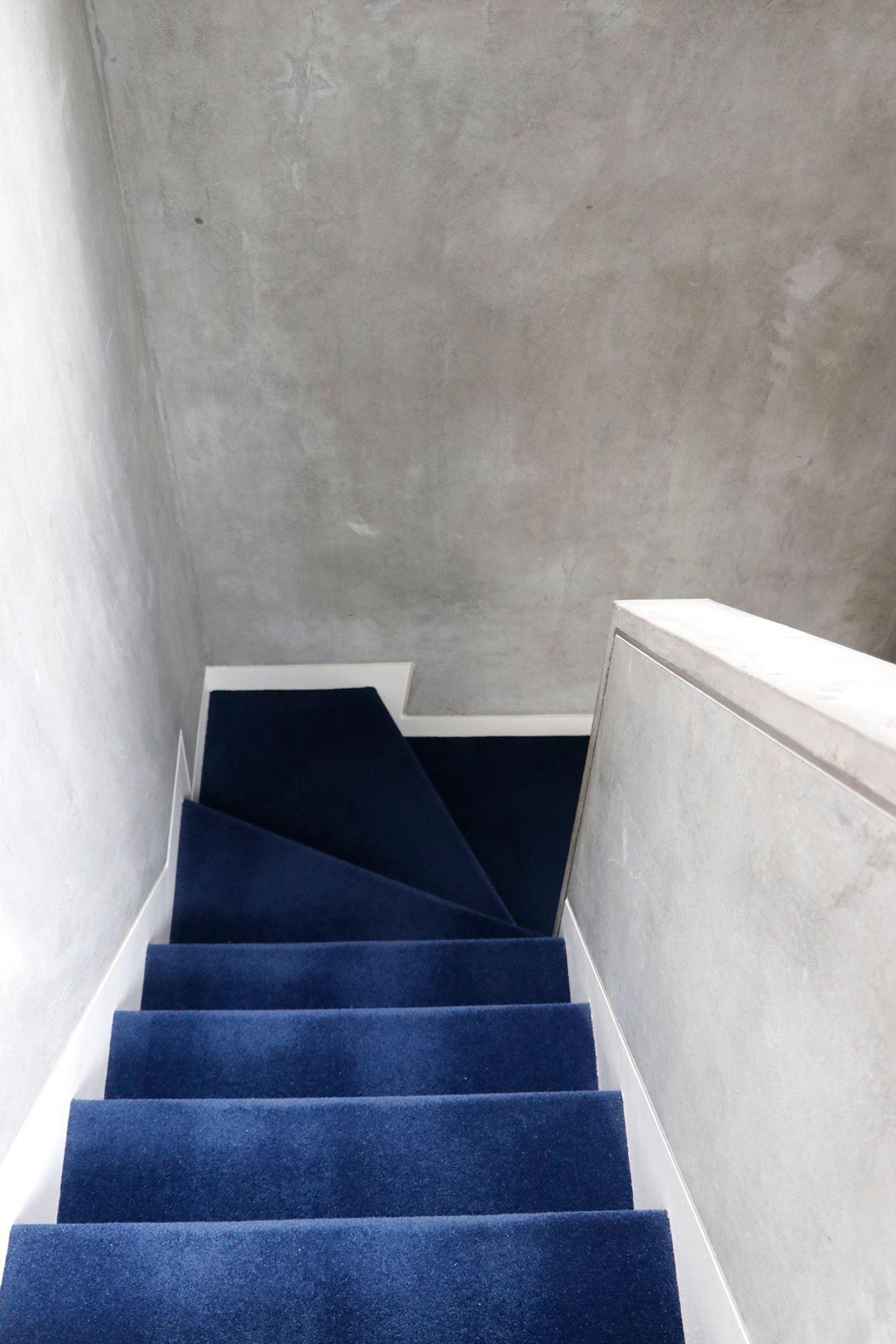 In the concrete/個人宅 (イン ザ コンクリート)カーペットの階段
